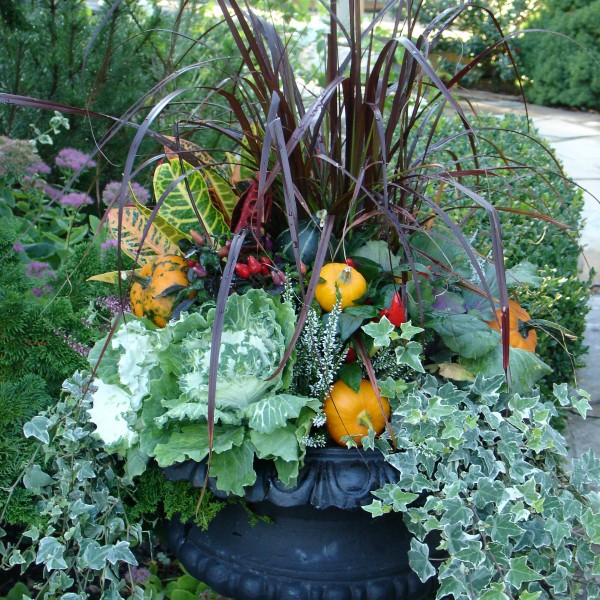 Fall Urn - Plant World