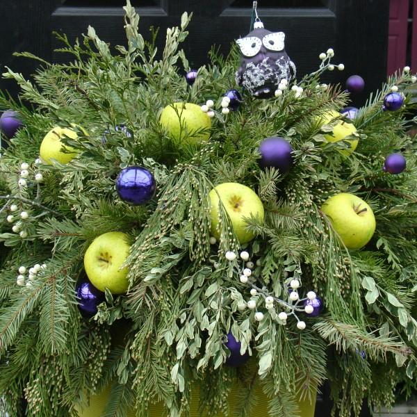 Winter Urn - Plant World