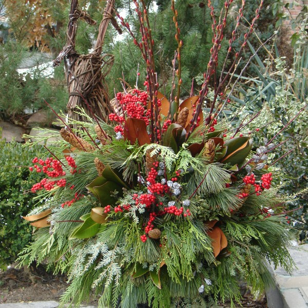 Winter Urn - Plant World
