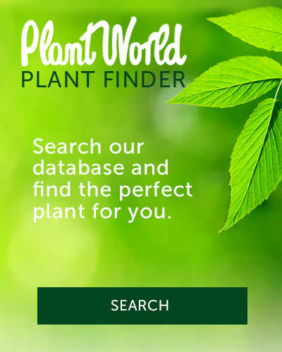 Plant World - Plant Finder